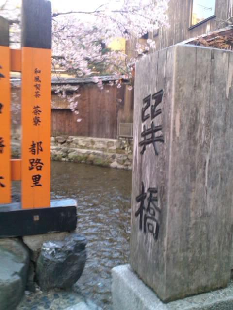 tatumi1.jpg